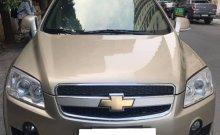 Bán xe Chevrolet Captiva LTZ 2009, số tự động, màu vàng cát giá 318 triệu tại Tp.HCM